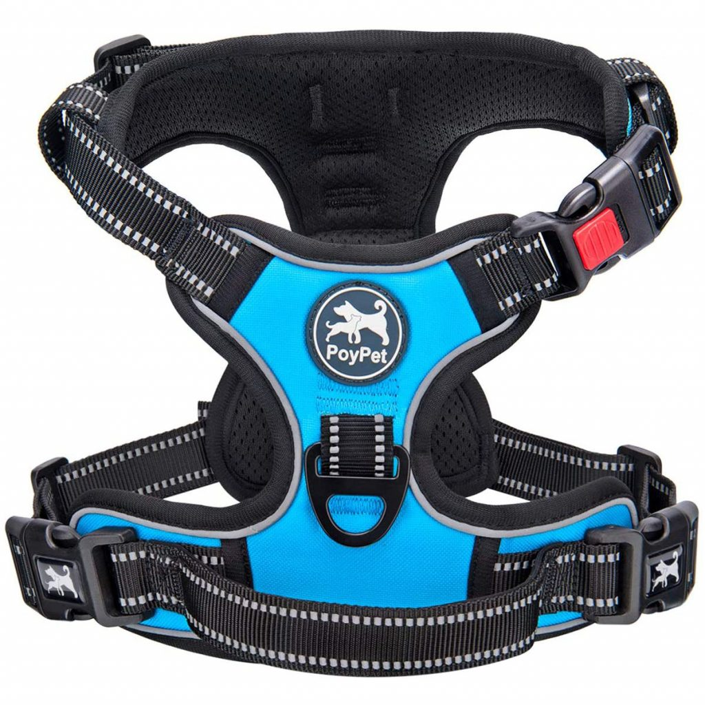 PoyPet Dog Harness, image via PoyPet/Amazon