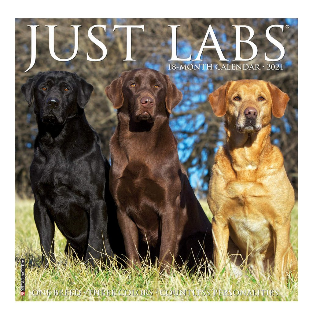Just Labs Wall Calendar via Amazon