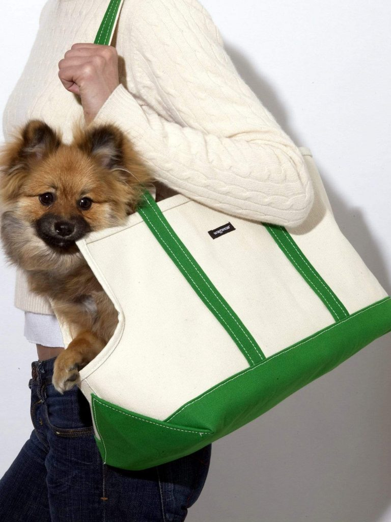 20+ Discreet Dog Purse Carrier Options For Stylish Pups - feat. 'Wagwear Boat Canvas Carrier' via Design Milk