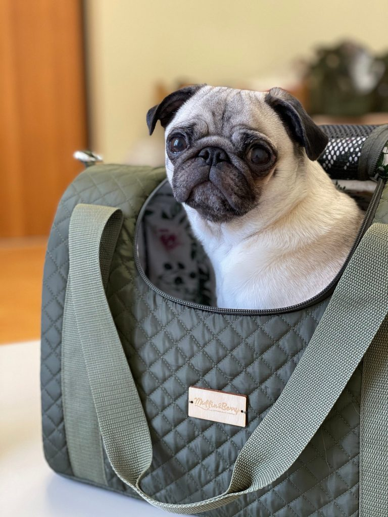 20+ Discreet Dog Purse Carrier Options For Stylish Pups - feat. Muffin and Berry (Etsy) 'Eleanor' Pet Carrier - image via Muffin and Berry