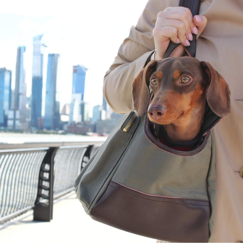 20+ Discreet Dog Purse Carrier Options For Stylish Pups - Image via Django Brand/Amazon feat. 'Django Waxed Canvas Pet Carrier Bag'