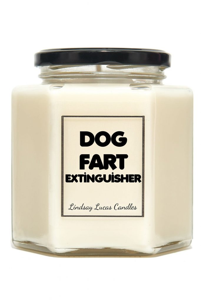 Dog Fart Extinguisher Funny Candle Gift (Linsay Lucas Candles – Etsy)