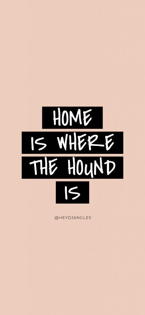 """Dog lover quotes - """"Home is where the hound is""""."""