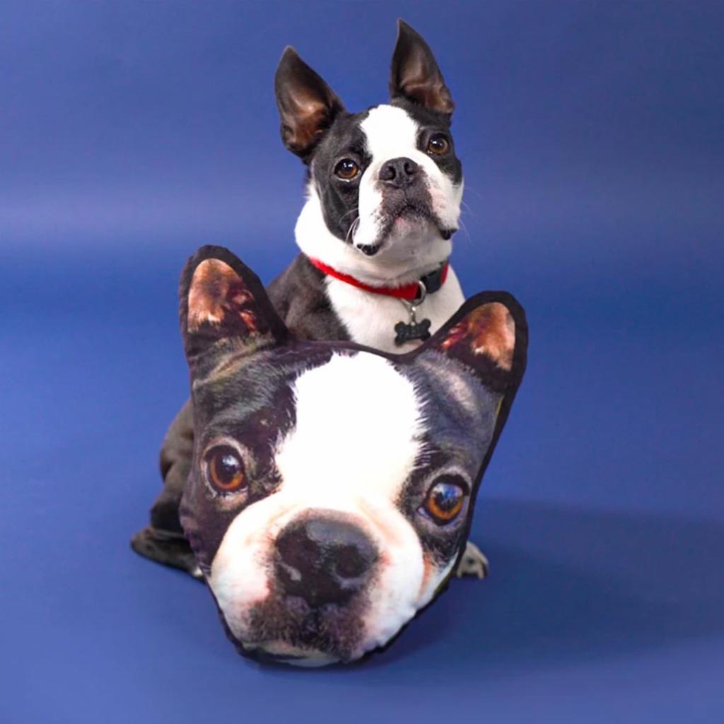 Personalized Pet Face Cushion (Lovimals)