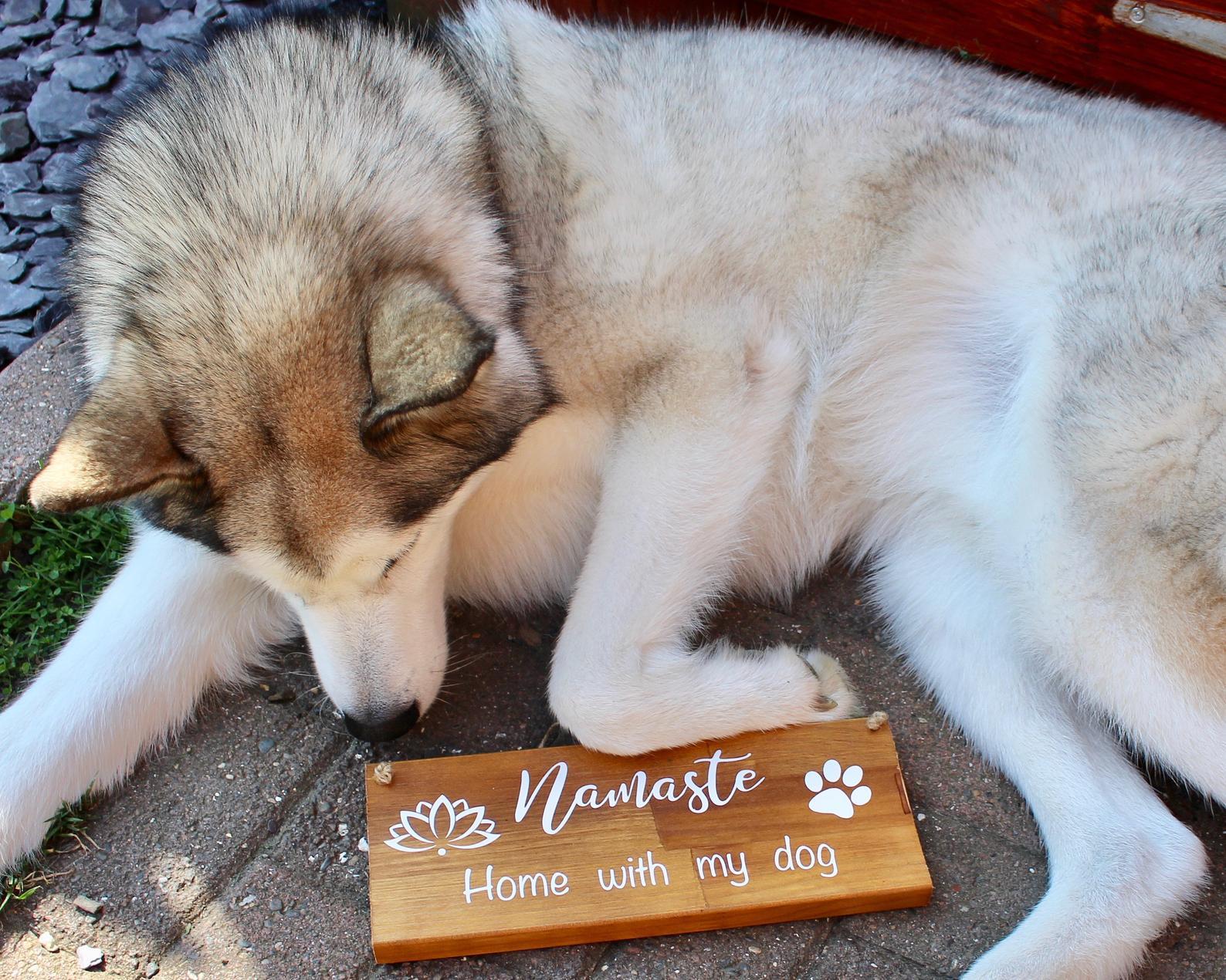 """""""Namaste home with my dog"""" - Image via Samantha Jayne Art (Etsy)"""