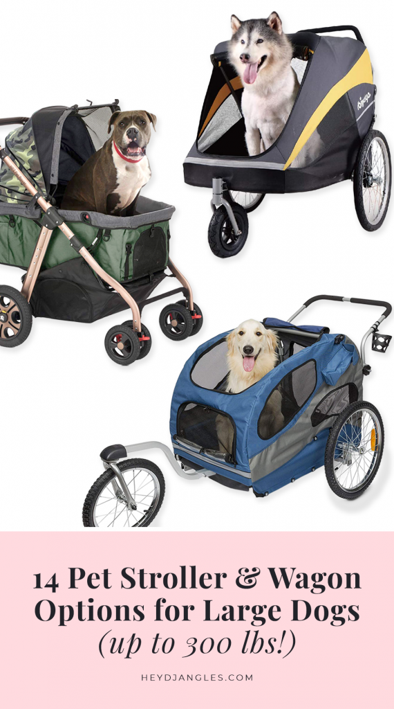 14 Pet Stroller and Wagon Options for Large Dogs (up to 300 lbs!)