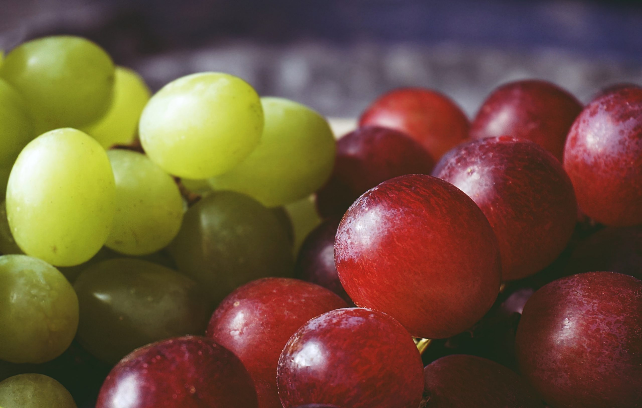 20 Foods Harmful to Dogs - grapes and raisins