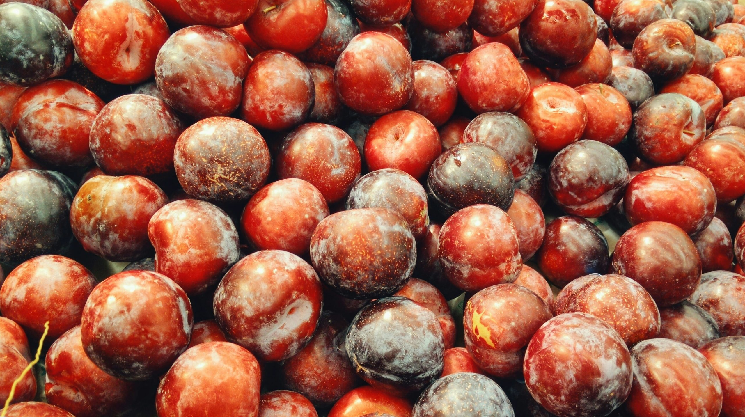 20 Foods Harmful to Dogs - stone fruits