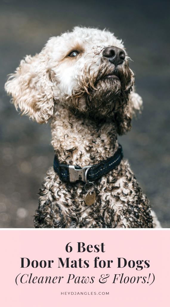 Best Door Mats for Dogs