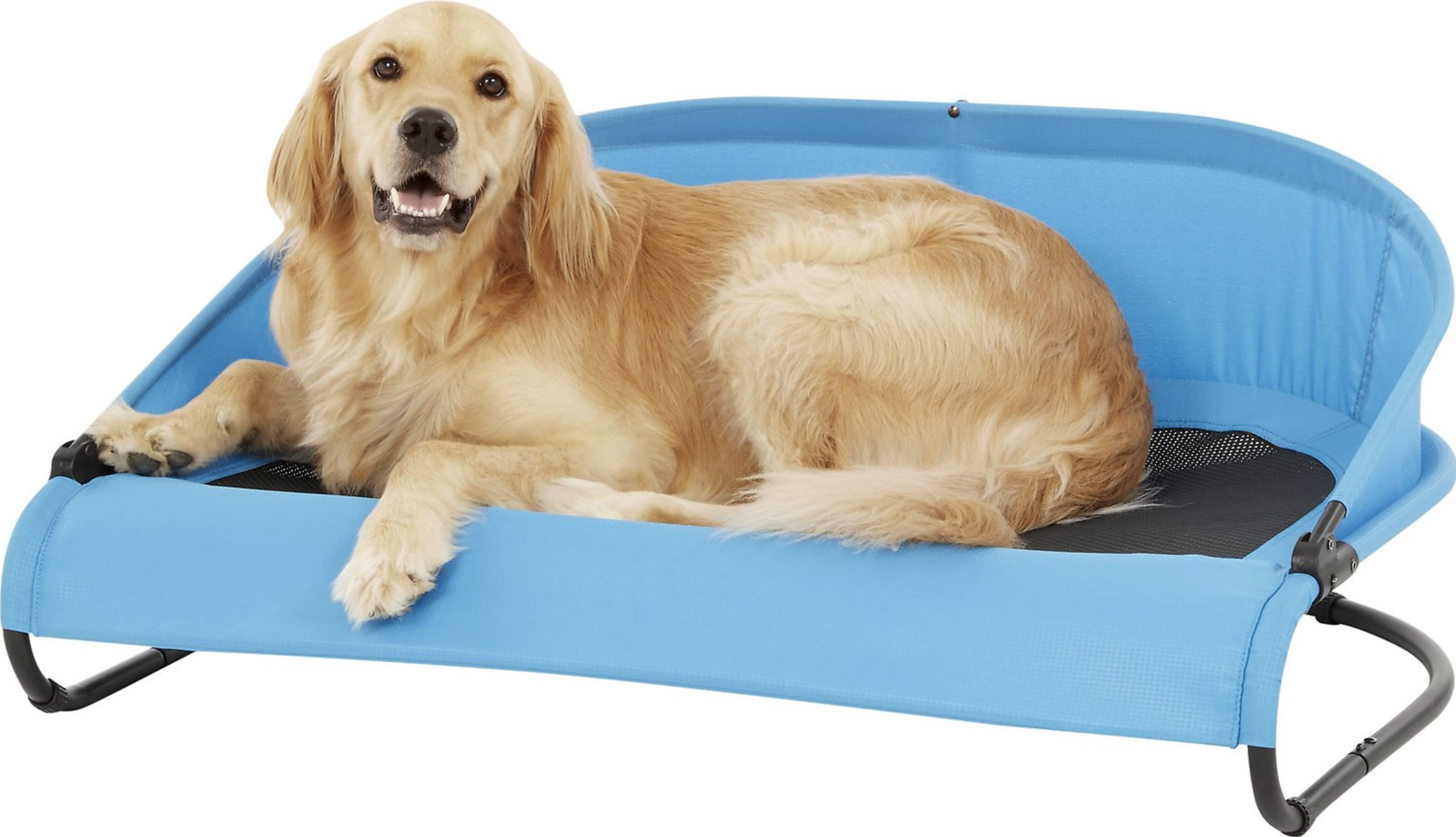 Best Cooling Beds for Dogs feat. GEN7PETS Cool-Air Cot Elevated Dog Bed, image via Gen7Pets/Chewy