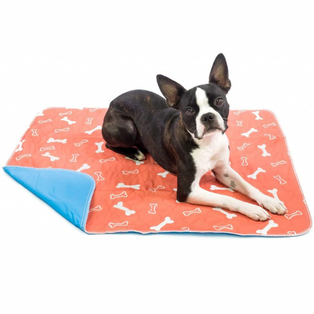 The Proper Pet Washable Pee Pads for Dogs