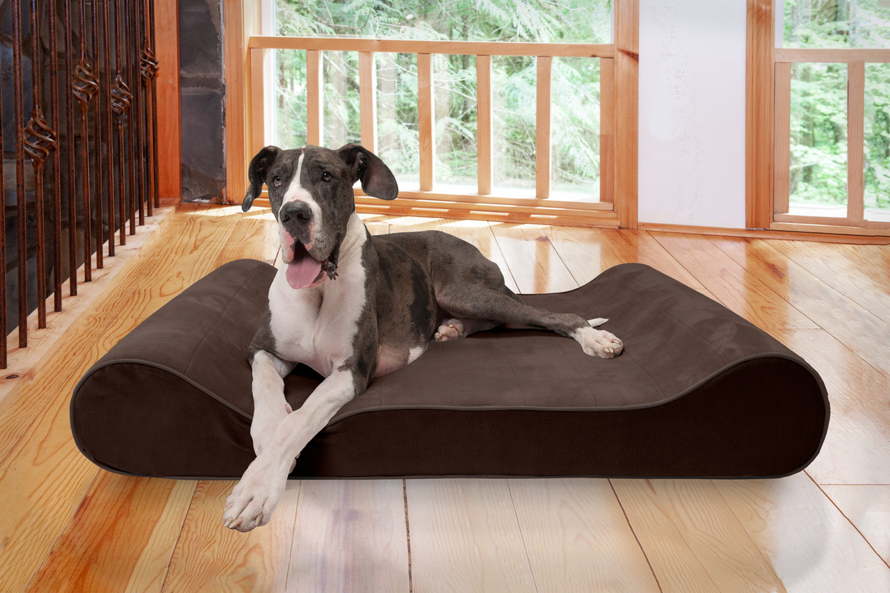 FURHAVEN PET Luxe Lounger Dog Bed with Cooling Gel Foam