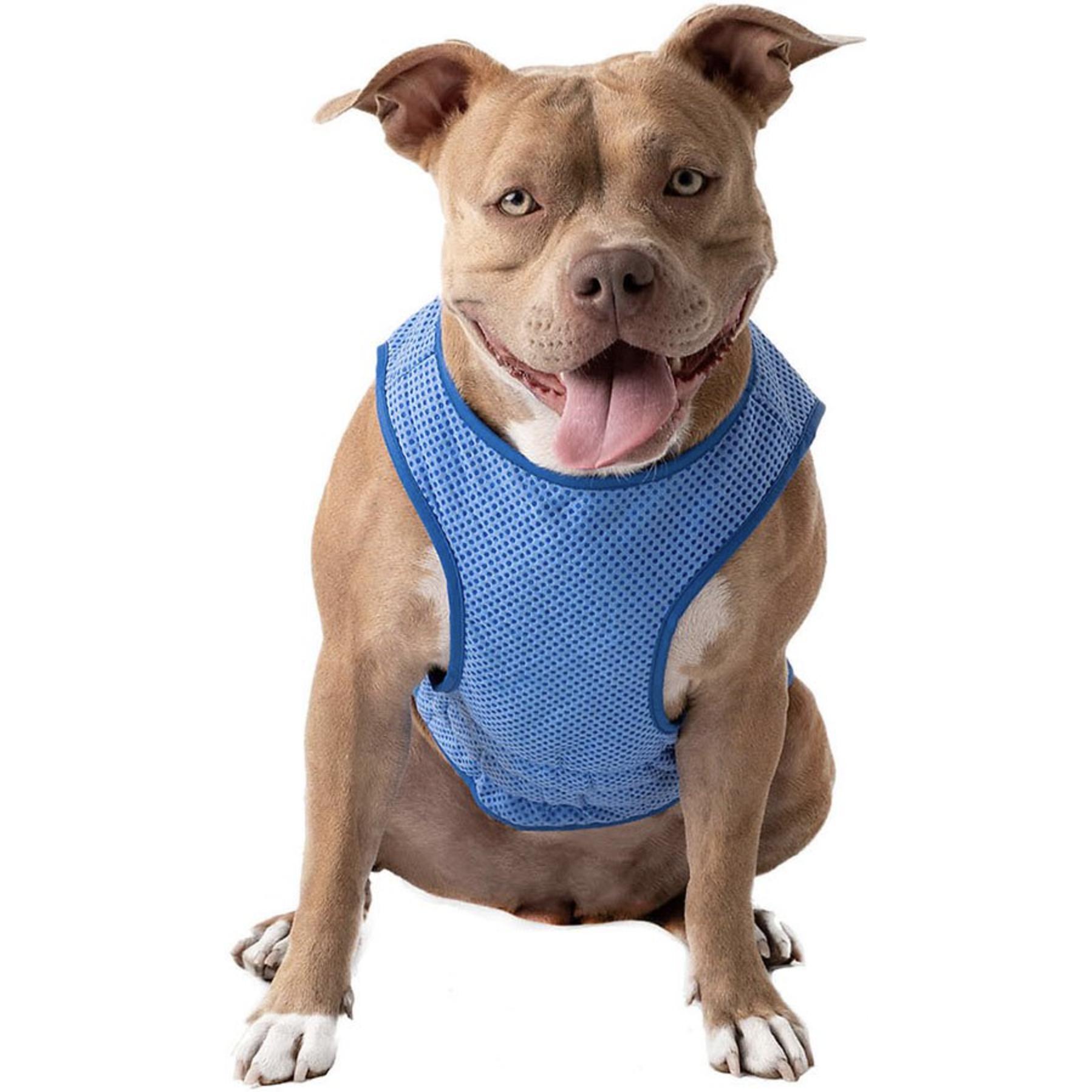 GF PET Elastofit Ice Dog Vest via Chewy
