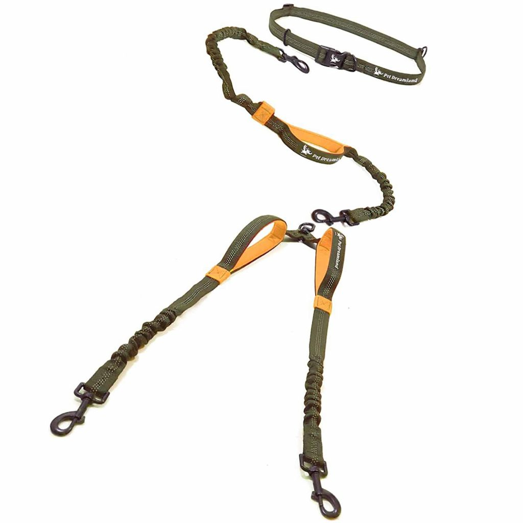 PET DREAMLAND Hands-Free Double Dog Leash via Amazon