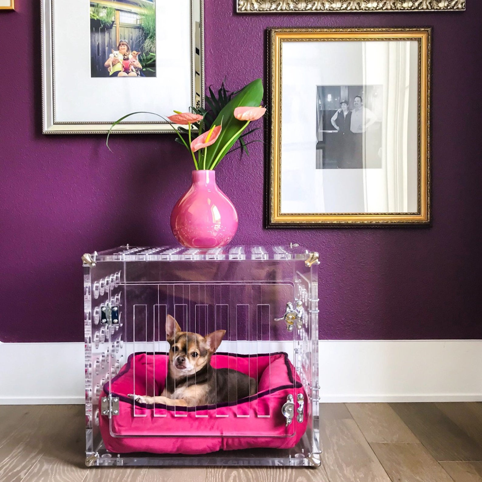 Petite Pretty Kennel for Dogs under 10 lbs via Pretty Kennels (Etsy)