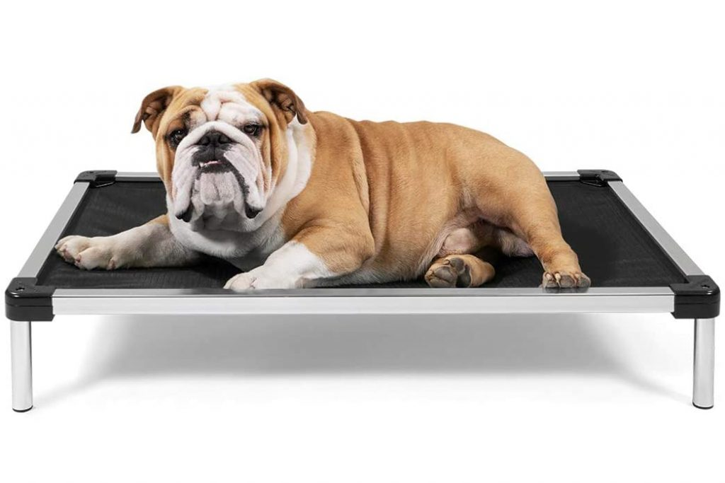 14 Best Tough Dog Beds for Chewers (With Guarantees!) feat. K9 BALLISTICS CHEW PROOF ELEVATED DOG BED