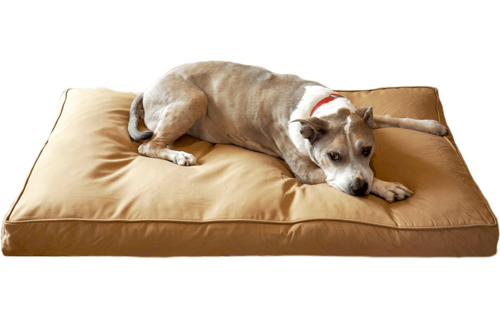 14 Best Tough Dog Beds for Chewers (With Guarantees!) feat. BULLY BEDS CHEW RESISTANT DOG BED