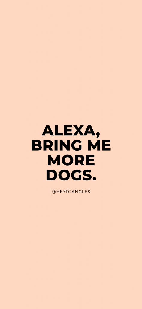 Dog Quotes - Alexa, Bring Me More Dogs.