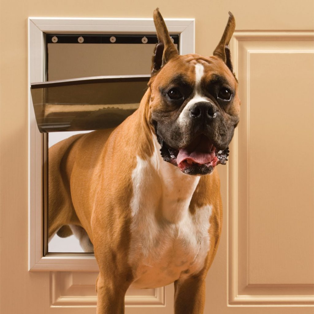 12 Practical Doggy Doors for Large Dogs (up to 220 lbs) feat. PETSAFE Freedom Aluminum Pet Door