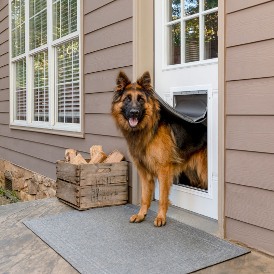 12 Practical Doggy Doors for Large Dogs (up to 220 lbs) feat. PETSAFE Extreme Weather Aluminum Pet Door