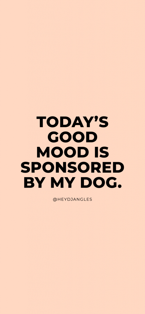 Dog Quotes - Today's Good Mood Is Sponsored By My Dog.