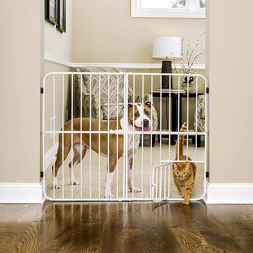 16 Best Expandable Gates for Dogs feat. CARLSON Metal Expandable Pet Gate via Amazon