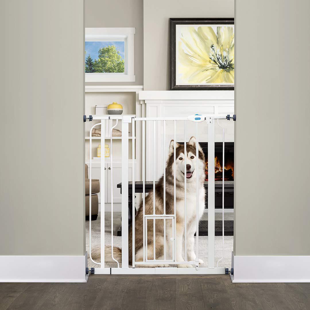 16 Best Expandable Gates for Dogs feat. CARLSON Walk Through Pet Gate via Amazon