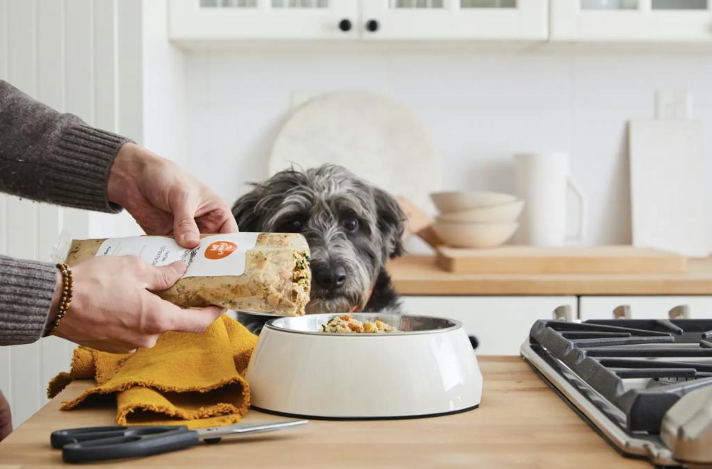 The Farmer's Dog human-grade fresh food for dogs. Image via The Farmer's Dog.