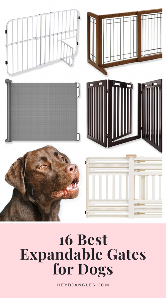 16 Best Expandable Gates for Dogs - feat. expandable pet gates from brands such as Carlson, ARF Pets, Pawland, Richell, Frisco, Regalo, IRIS USA, Cardinal Gates and more. #expanablepetgate #doggate #petgate