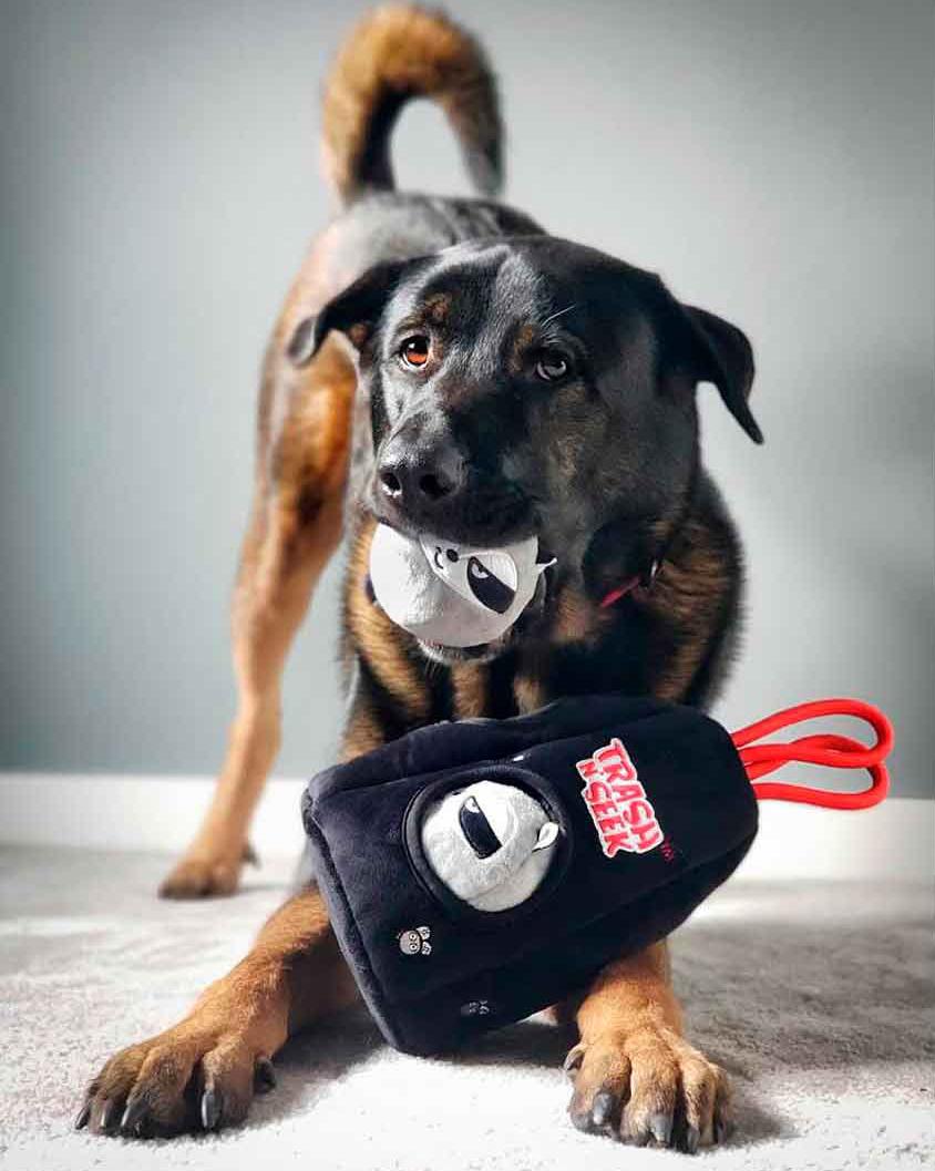 Tough Toys For Dogs feat. BULLTUG Trash N' Seek Puzzle Toy via Amazon
