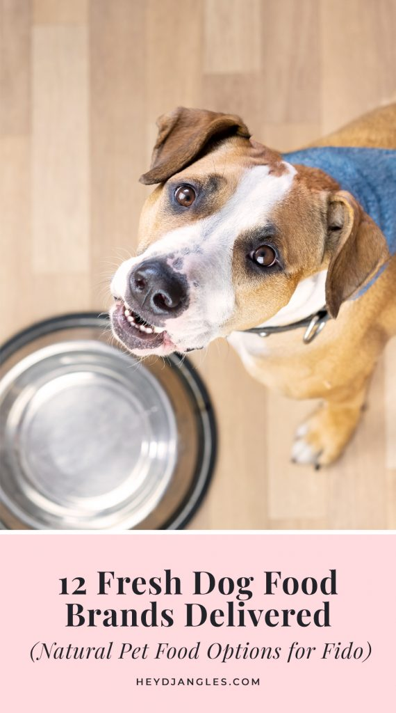 12 Fresh Dog Food Brands Delivered - All-natural Fresh Pet Food Options for Fido - brands incl. Ollie, Nom Nom Now, Raised Right, Tylee's, The Farmer's Dog, The Honest Kitchen, Just Food for Dogs and more!