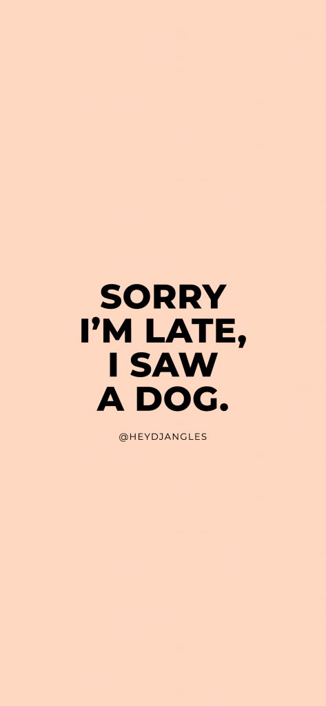 "Funny dog quotes - ""Sorry I'm Late, I saw a dog."""