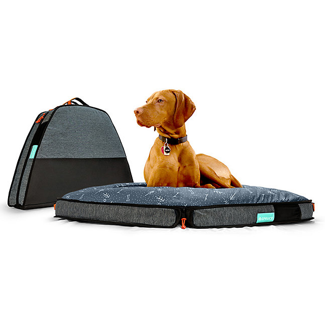10 Best Folding Dog Bed Options for Camping and Travel feat. SPRUCE PUP Travel Dog Bed via Moosejaw