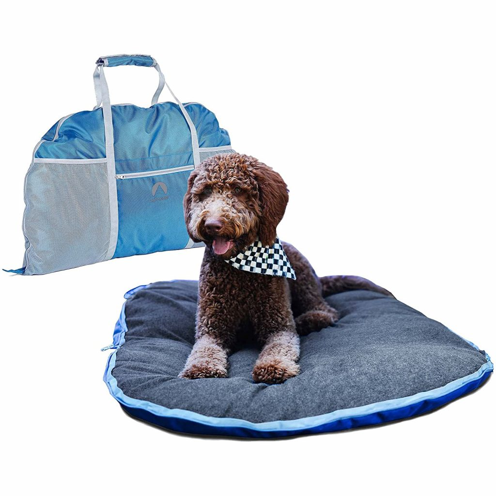 10 Best Folding Dog Bed Options for Camping and Travel feat. LIGHTSPEED OUTDOORS Fold and Go Travel Pet Bed via Amazon
